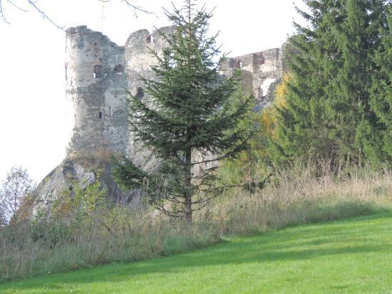 Privatzimmer Hubertushof Teufenbach: Steinschloss