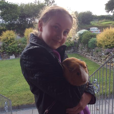 Chark Farm: This is me with hobnob the guinea pig
