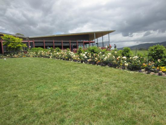 Beautiful gardens of chocolaterie picture of yarra for Garden design yarra valley
