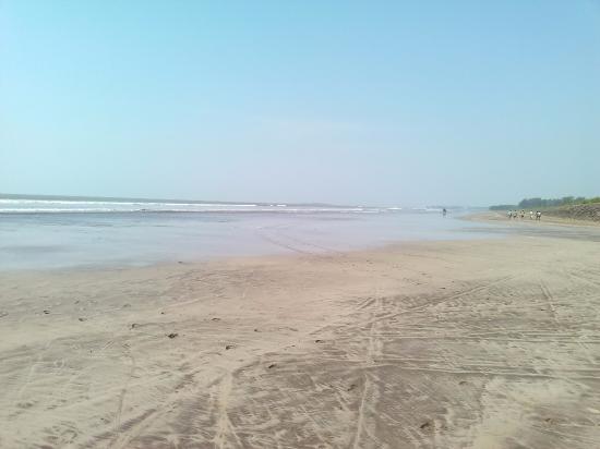 Hotels Near Nagaon Beach Alibaug