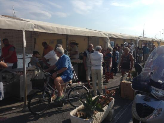Hotel Centro: рыбный рынок