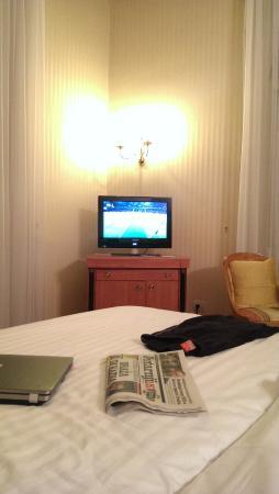 Hotel Milenij: Small TV