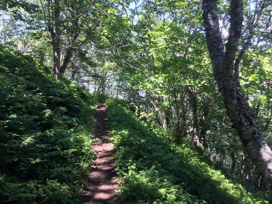 Parrsboro, Kanada: Hiking path
