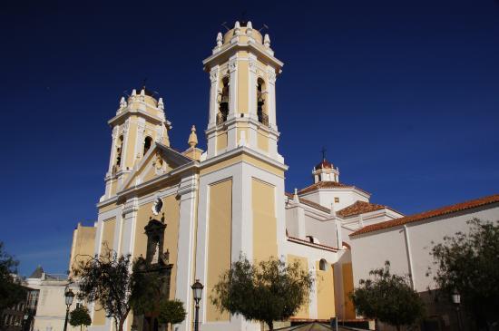 Catedral de Santa María de la Asunción: Кафедральный собор