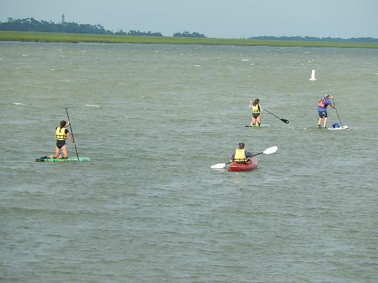 Folly Beach Adventures Sup Kayak Tour With Matteo