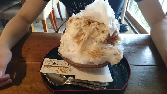 Nikko Coffee Tamamokoji