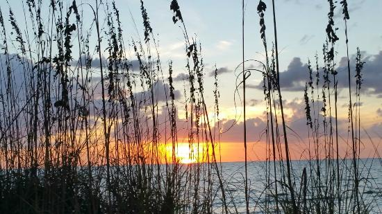 Sea Club 1: Sea Club Sunset w/Sea Oats