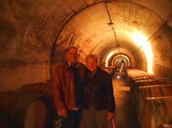 Cal Santi: bodega Torres wine cellar