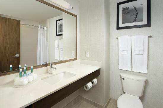 Holiday Inn Express & Suites Bay City: Guest Bathroom