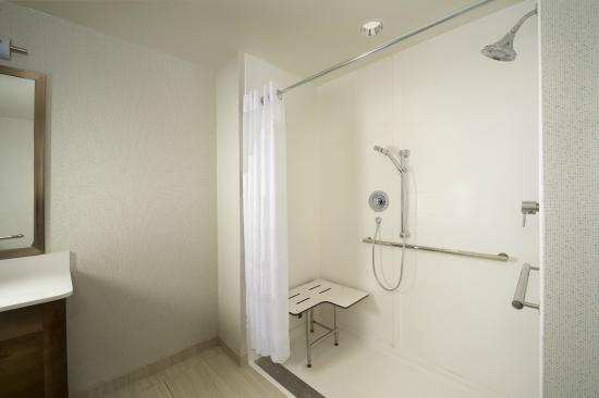 Holiday Inn Express & Suites Bay City: ADA Roll-In Shower Guest Bathroom