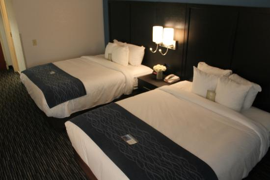 Comfort Inn University: 2 Queen Bed Guest Room