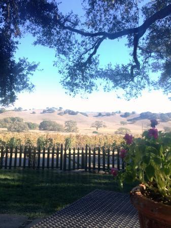 Solvang, CA: Amazing View