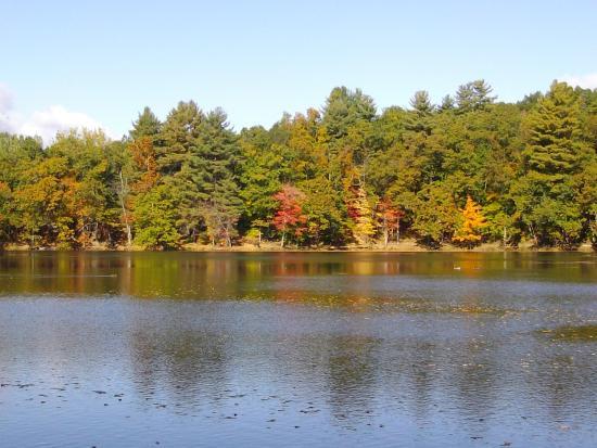 Amherst, Μασαχουσέτη: Puffer's Pond en otoño