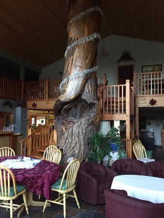 Glenogle Mountain Lodge & Spa: Tree in dining room.