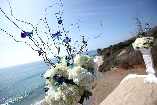 All Inclusive Beach Wedding Packages By Albertson Chapel