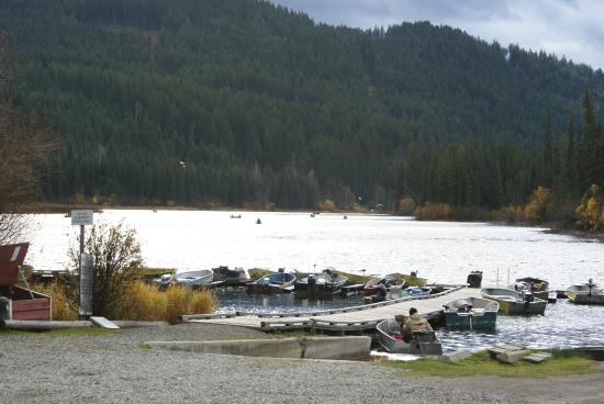 Heffley Creek, Canadá: Busy on the lake for the derby.