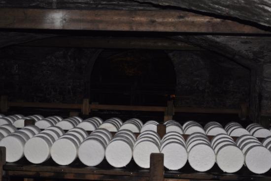 Roquefort Sur Soulzon, France : Algo de stock