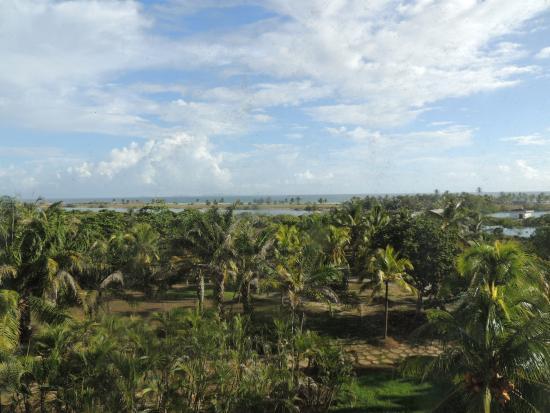Laguna Mar: vista desde la habitacion
