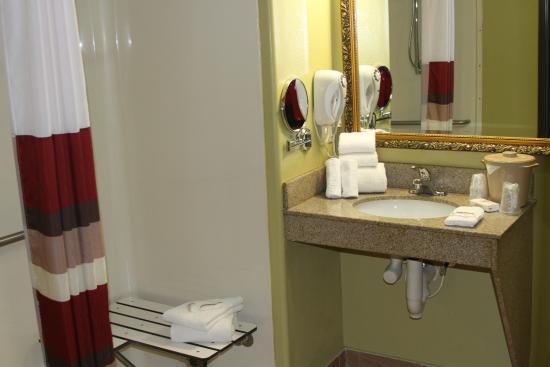 Melvindale, Μίσιγκαν: Accessible Bathroom Vanity