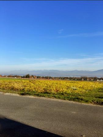 Chavannes-de-Bogis, Suiza: BEST WESTERN Chavannes De Bogis