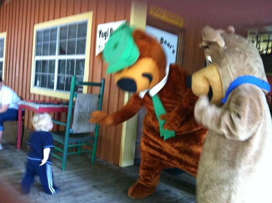 Ragans Family Campground : Yogi Bear and BooBoo meeting a little chap!!!