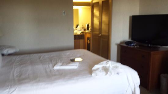 bom quarto