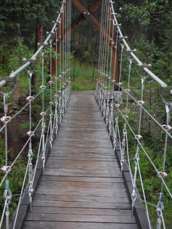 Denali Visitor Center: Suspension Bridge