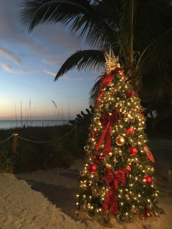 Great Place To Go For The Sunset And Fun Christmas Decorations