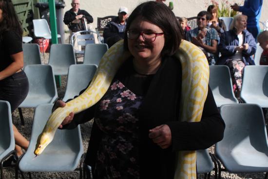 Borth, UK: Python!
