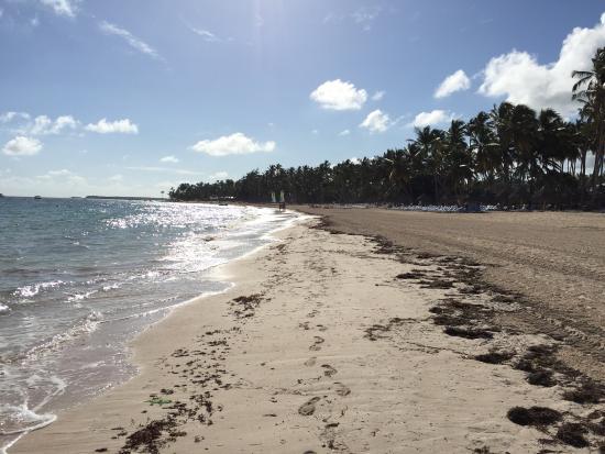 Beach - The Level at Melia Caribe Beach Photo