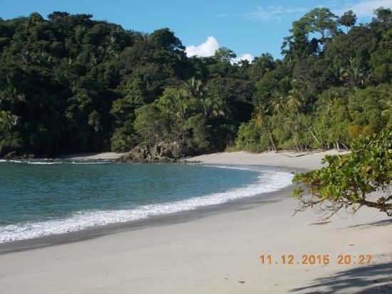 Manuel Antonio National Park Picture Of Caravan Tours