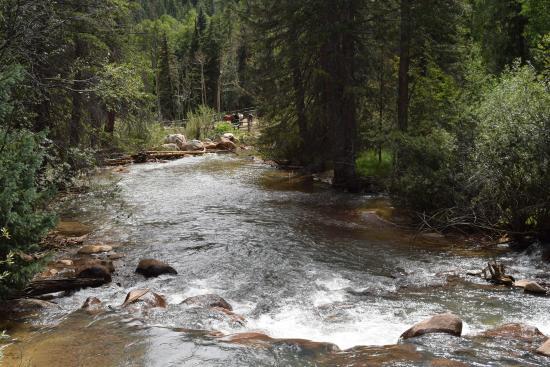 Grant, Κολοράντο: Creek runs through property
