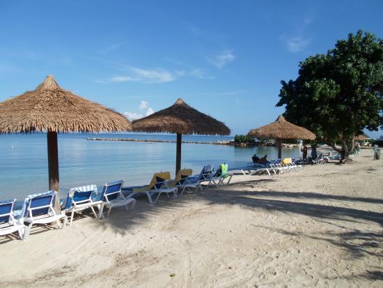 Tripadvisor Montego Bay Sunset Beach Resort And Spa