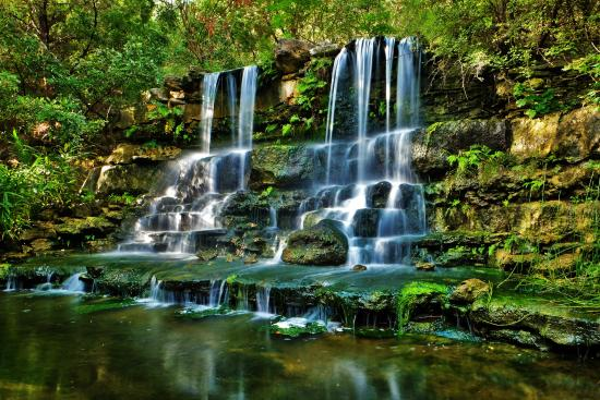 Zilker Botanical Garden: And Calming Waterfalls