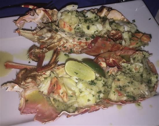 Buzz Seafood and Grill : photo0.jpg