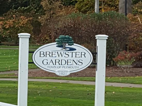 Brewster Gardens: 20151028_120228_large.jpg