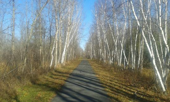 Ingleside, Canadá: Upper Canada Migratory Bird Sanctuary