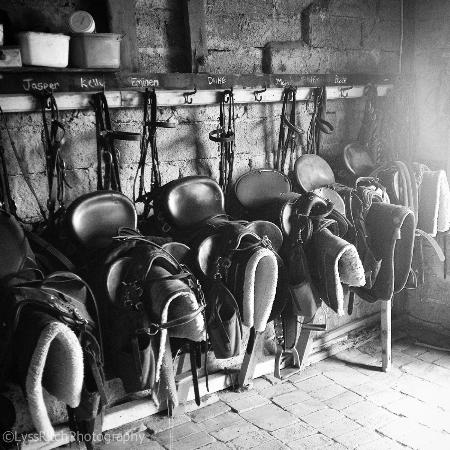 O'Connell, Australia: The tack room