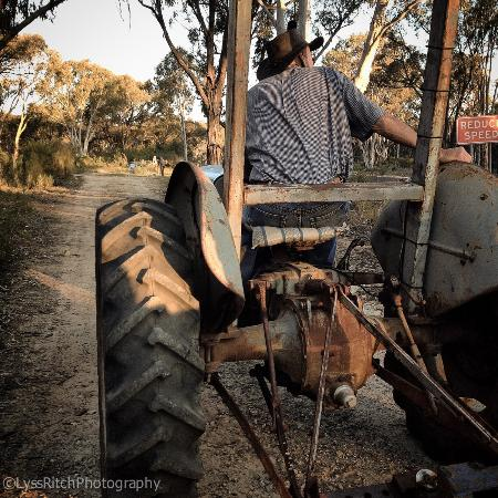 O'Connell, Australië: Tractor rides