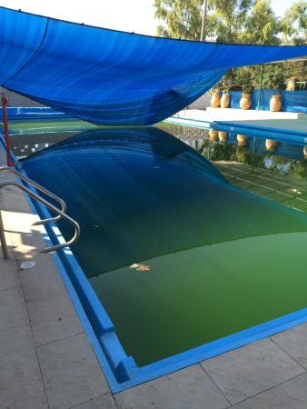 Alaska Inn : pool facility