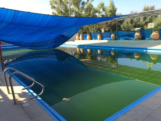 Alaska Inn: algae filled pool water