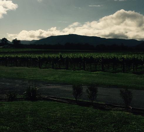 Nightingale Wines Luxury Villas : photo2.jpg