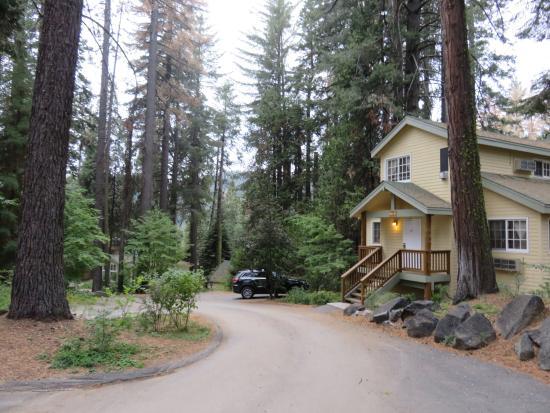 Tenaya lodge yosemite picture of tenaya lodge at for Yosemite fish camp