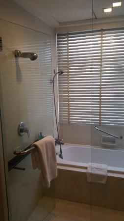 Stand-alone shower, bathtub+shower combo