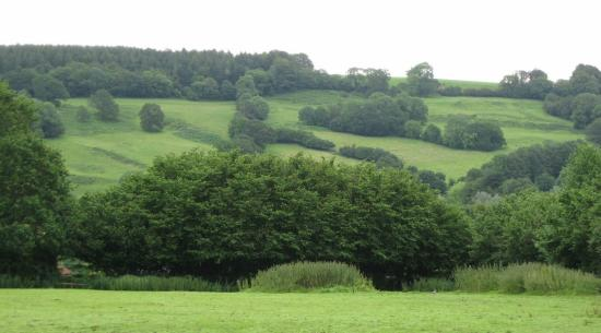 Wilmington, UK: Blackdown Hills