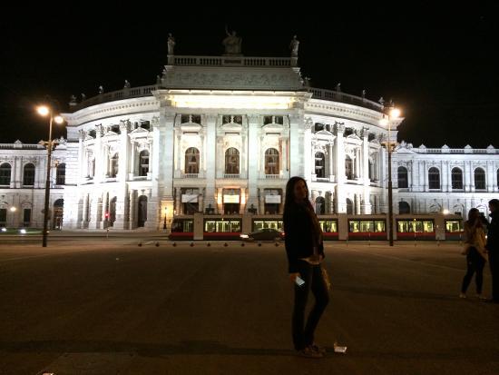 трамвай в ночи изображение Austria Time экскурсии по вене и