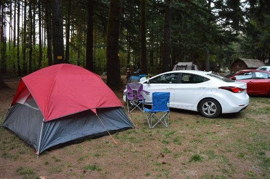 Cascade Locks KOA: Campsite and car park view