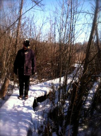 Buchanan, MI: A beautiful & refreshing winter hike in the bog, Jan. 2015