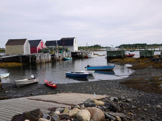 Pleasant Paddling: The warf at low tide.