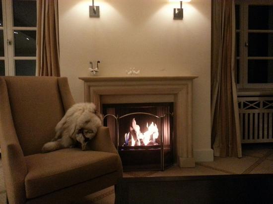 Unkel, Alemania: fireplace